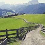Dolomite Hike #italianalps #dolomites #dolomite #dolomiteexperience #dolomitealps #alp #alps #hikingguide…